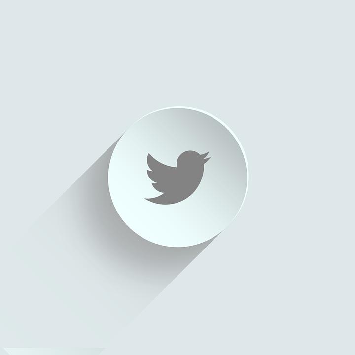 خطوات زيادة متابعين تويتر